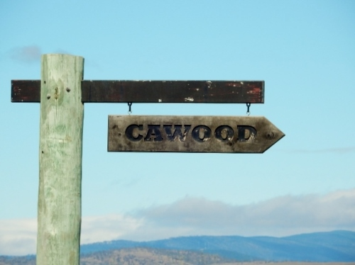 Cawood Sign